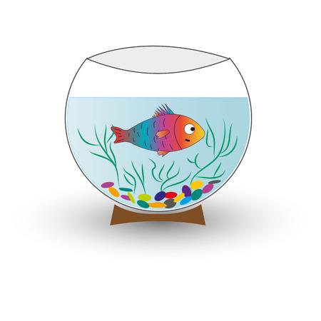 athe round glass quarium with fish isolated.