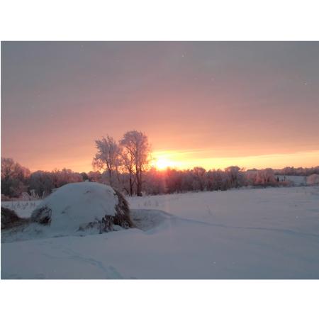 winter's tale: Winters Tale.