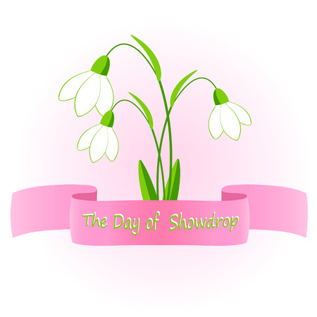snowdrop: The day of snowdrop. vector illustration of snowdrop flowers.