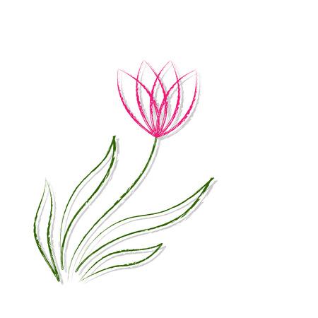 rosewood: Drawing Flower On Blackboard illustration vector.