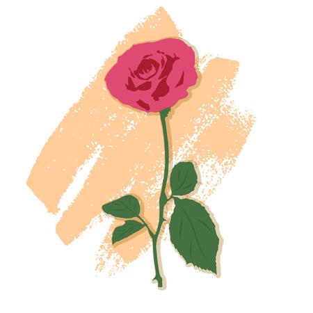 rose: illustration of a rose.