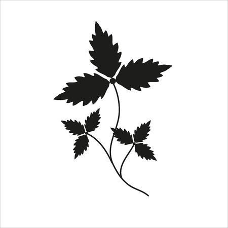 Branch with leaves black silhouette closeup isolated on white background. Illustration