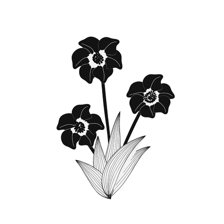 Illustration of wild black flowers bouquet.