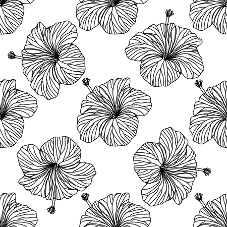 Seamless vector background, outline hibiscus flowers on white background  イラスト・ベクター素材