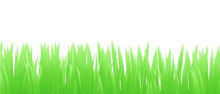 Grass Border , Vector Illustration Illustration