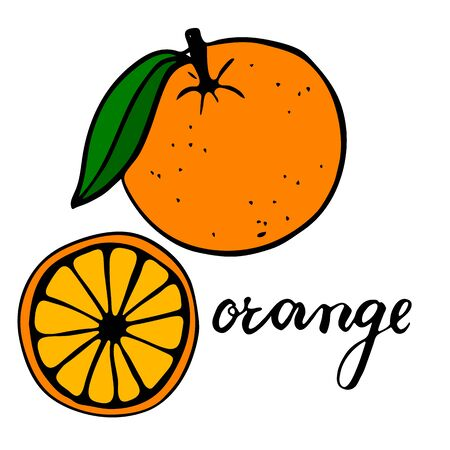 Bright ripe orange with one green leaf. Half a citrus in section. Lettering word orange.