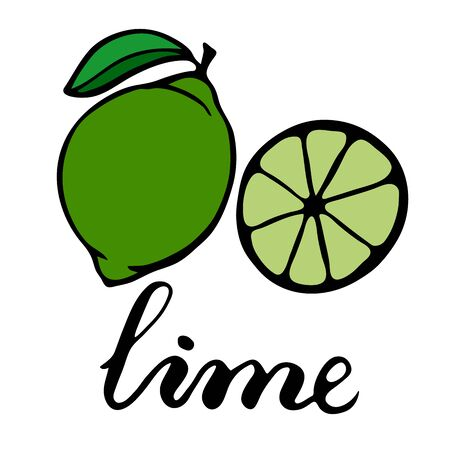 Green ripe lime with one green leaf. Half a citrus in section. Lettering word lime Illustration
