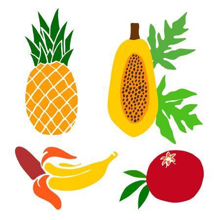 A set of painted fruits. Pineapple, pomegranate and papaya, banana. Vector