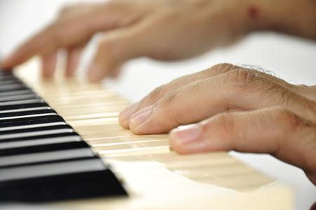 pianista: Hand of musician play Piano keyboard.