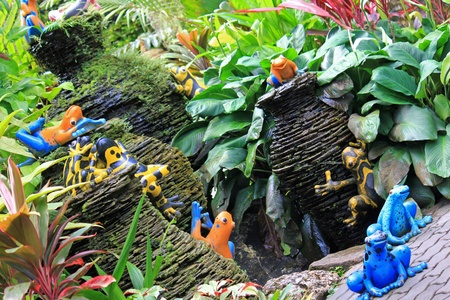 Colorful frogs and mini pottery fountain at the tropical garden, Thailand