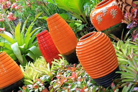 Big vibrant enameled Vases to decorate a Bromeliad garden photo