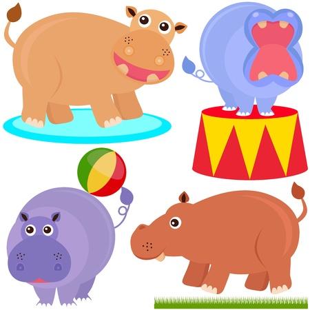 A colorful set of cute Animal Icons : hippopotamus (hippo) Stock Vector - 12119564