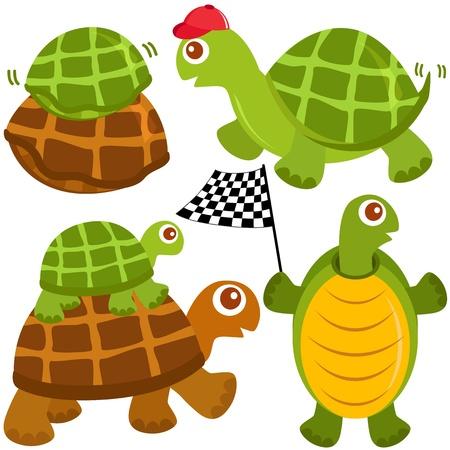 beenderige: Een kleurrijke en schattige collectie van Turtle, de winnaar op wit wordt geïsoleerd Stock Illustratie