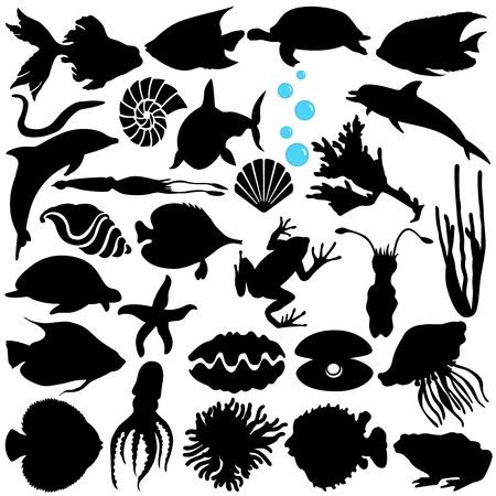 민물의: 물고기, 해양 생물의 벡터 실루엣 (해양 생물, 해산물)