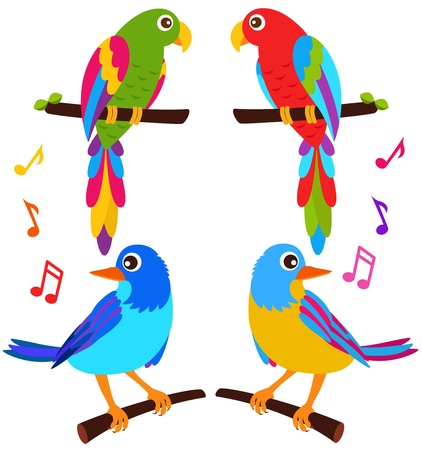bird: 다채로운 벡터 아이콘 : 앵무새와 흰색에 고립 된 새