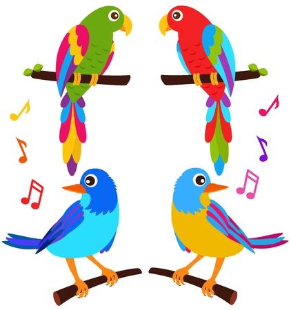 Een kleurrijke Vector Icons: Papegaaien en Vogels op wit wordt geïsoleerd