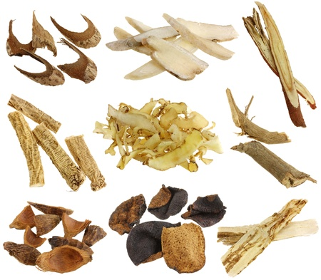 oriental medicine: Herbal medicine -  Assortment of Dried Chinese herbs isolated on white background  White peony root, licorice root, Dang Shen, Solomon s seal, Betel nut, Tangerine peels, Dong Quai