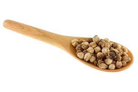 A wooden spoon full of dried Round Siamese Cardamom  Camphor Seed Stock Photo - 13865749