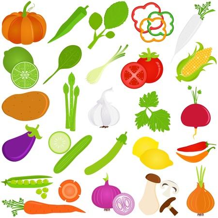 coriandrum sativum: Vector iconos coloridos de fruta y verduras Vectores