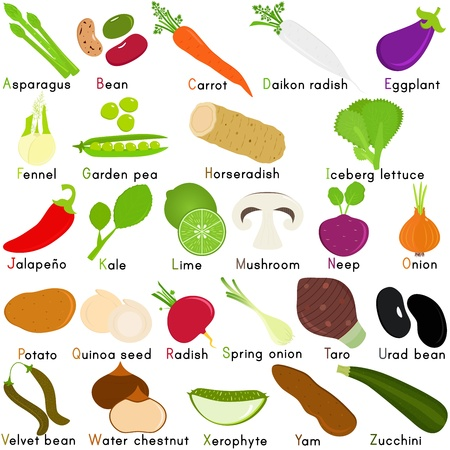 Zurück zur Schule: Ein Set von Vektor-Icons von Gemüse Stellvertretend Alphabet von A bis Z - Wörterbuch für Kinder Standard-Bild - 17930593