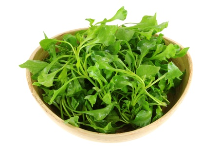 A Bowl of Fresh Watercress  Nasturtium officinale , isolated on white background Stock Photo