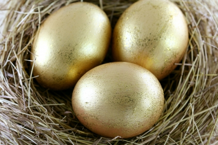 retirement nest egg: A Hay Nest with 3 golden Eggs with glitters Stock Photo
