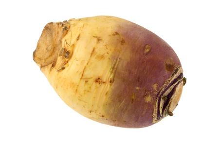 rapa: Closeup photo of Turnip  Brassica rapa  on a white background  Stock Photo