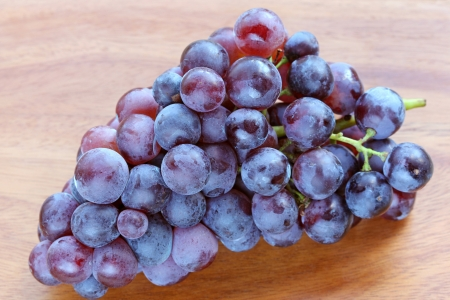 sudtirol: Fresh Grapes to make red wine from Sudtirol  South Tyrol, Italy  Stock Photo