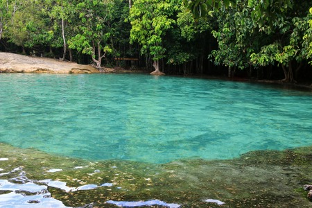 Emerald green water in a natural pool at Emerald Pool (Sa Morakot) in Krabi, Thailand photo