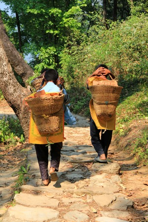 weaved: Young boys carrying hand weaved basket full of bricks down the mountain in Pokhara, Nepal Editorial
