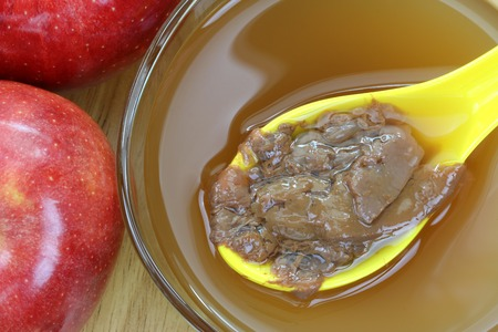 enzymes: A spoon of Mother enzymes on a bowl of raw and unfiltered organic apple cider vinegar