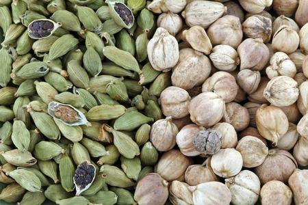 cardamon: Closeup of Dried green Cardamon pods and Round Siamese Cardamom (Camphor Seed) Stock Photo