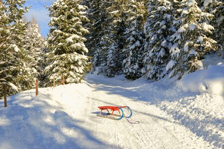 snow forest: An old-styled Rodel Toboggan in red and blue on snowy path in the forest in Austria Stock Photo