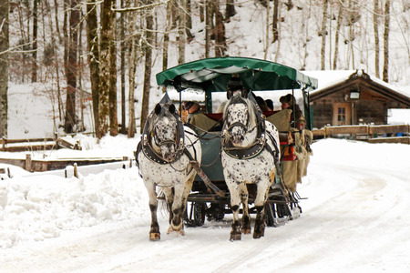 horse and carriage: People sitting inside a traditional horse carriage ride during the winter time in Wildbad Kreuth in Germany on January 4, 2015. These 2 horses are Knabstrupper Knabstrup with distinctive spots on the body. Editorial