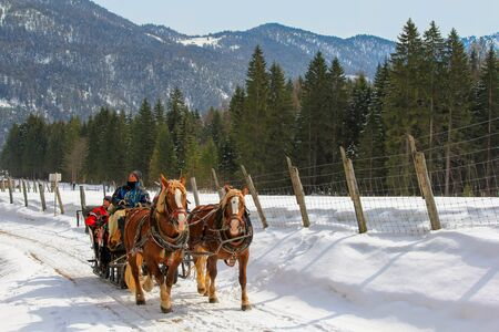 horse drawn: People enjoying a traditional horse drawn carriage ride during the winter time in Achenkirch, Tyrol, Austria on March 17, 2013