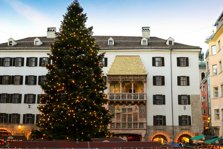huge christmas tree: People walking at Christmas Market with a huge Christmas tree  visible in front of the Golden Roof Goldenes Dachl in Innsbruck, Austria on December 21, 2014.