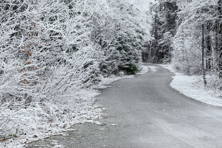 Trees covered with hoarfrost rime ice along the curvy road, beautiful winter scene Stock Photo