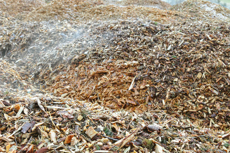 distributing: Soft focus of small pieces of pine branches, cones, barks chipper burned to generate heat for district heating system (heat networks)