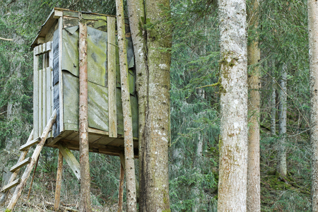 deer stand: An elevated wooden platform known as Tree stand or Deer stand on mountain for hunters to have a better sight