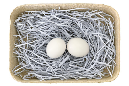 pigeon egg: Beige paper pulp egg tray packages made of recycled paper full of fresh eggs isolated on white Stock Photo