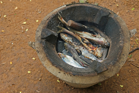 simple meal: Charcoal grilled fish caught from Mekong River in Laos, simple meal for local people