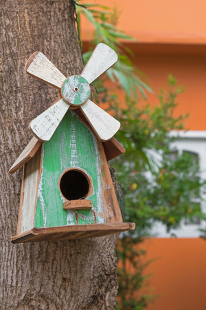 roosting: Hand made wooden bird house with white windmill with real bird nest inside, hanging on mango tree