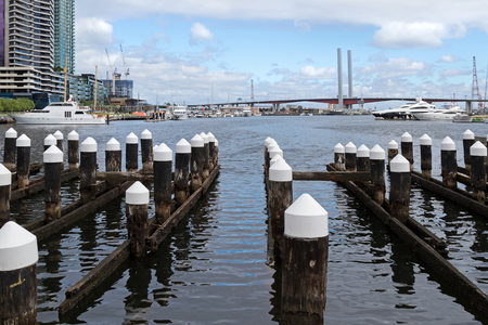 docklands: Wooden poles at the Melbourne Docklands in Melbourne, Victoria Harbour in Australia with the view of Bolte Bridge in the background