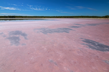 coloration: View of salt lake at Coorong National Park. The pink coloration caused by algae called Dunaliella salina in South Australia