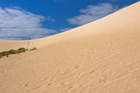 kangaroo island: A man walking up on high sand hill ridge from afar at Little Sahara white sand dune system on Kangaroo Island, South Australia