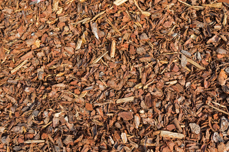 retain: Texture of Coarse dried Pine Bark Nuggets ideal for topping garden bed to retain moisture