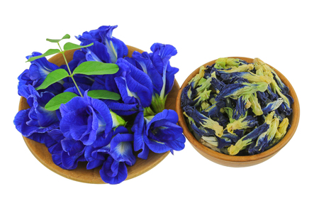 Fresh and dried Butterfly Pea, Blue Pea flowers in purple on wooden bowl,  isolated on white background (Clitoria ternatea)