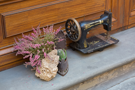 old styled: Soft focus pot of Erica carnea flower next to antique sewing machine decorating house and old styled iron in Florence, Italy