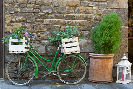 old styled: Old styled Bicycle in green with box of Mandevilla flowering plant parking outside building on street, Iatly