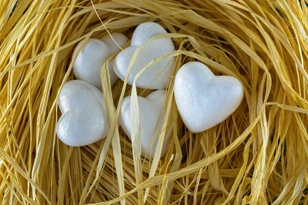 Group of 5 heart shaped white hearts in a bird nest